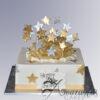 AC08 exploding stars WM Amarantos Cakes