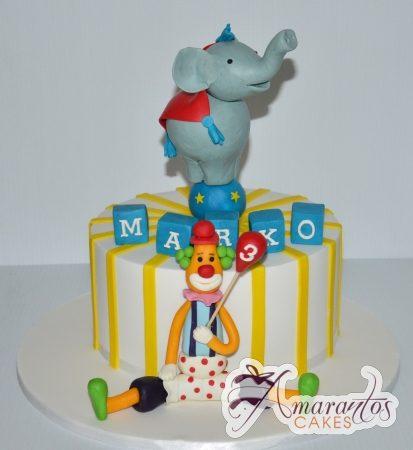 Circus cake – AC170