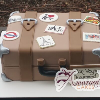 Suitcase Cake - Amarantos Custom Made Cakes Melbourne