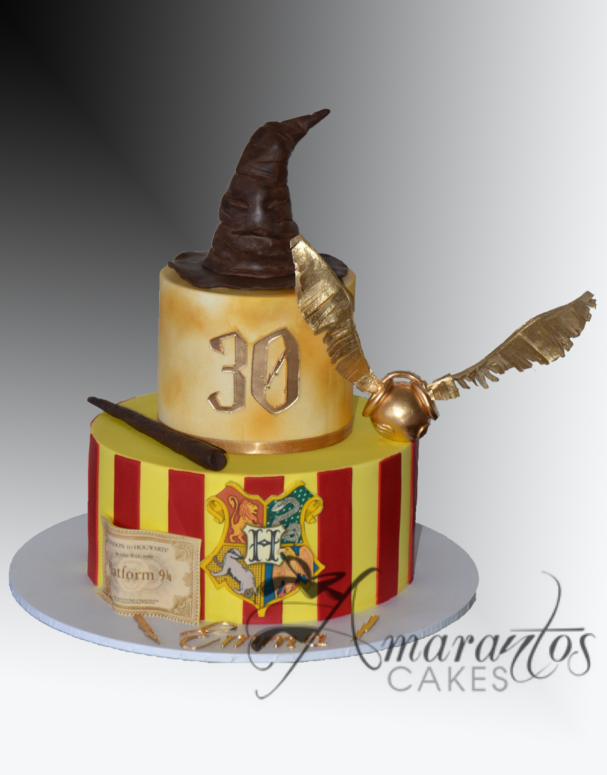 AC526 Two tier Harry Potter Cake