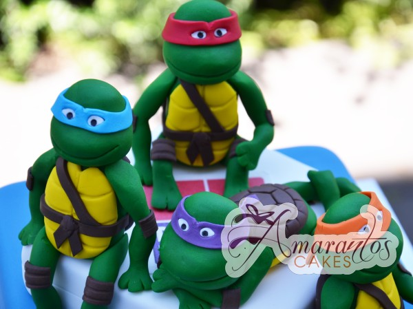 Base cake with TMNT- NC254