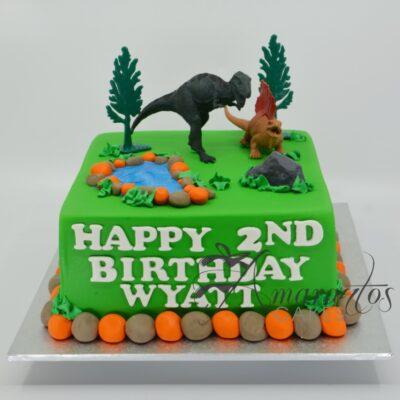 NC463 DINOSAUR CAKE