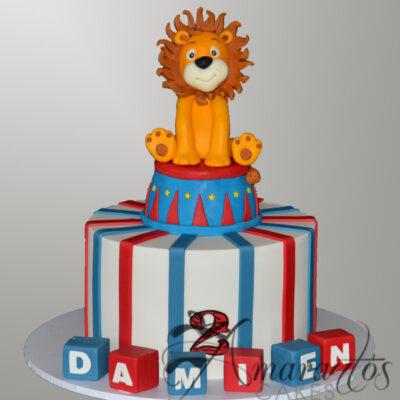 NC509 Circus cake