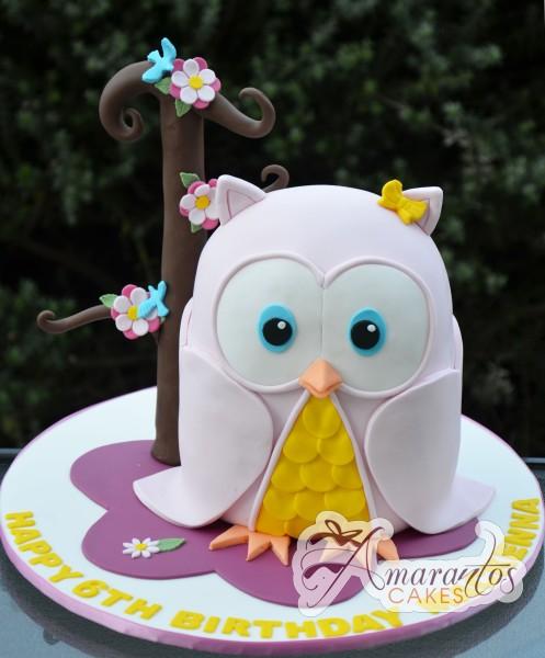 3D Owl Cake by Amarantos Cakes NC519