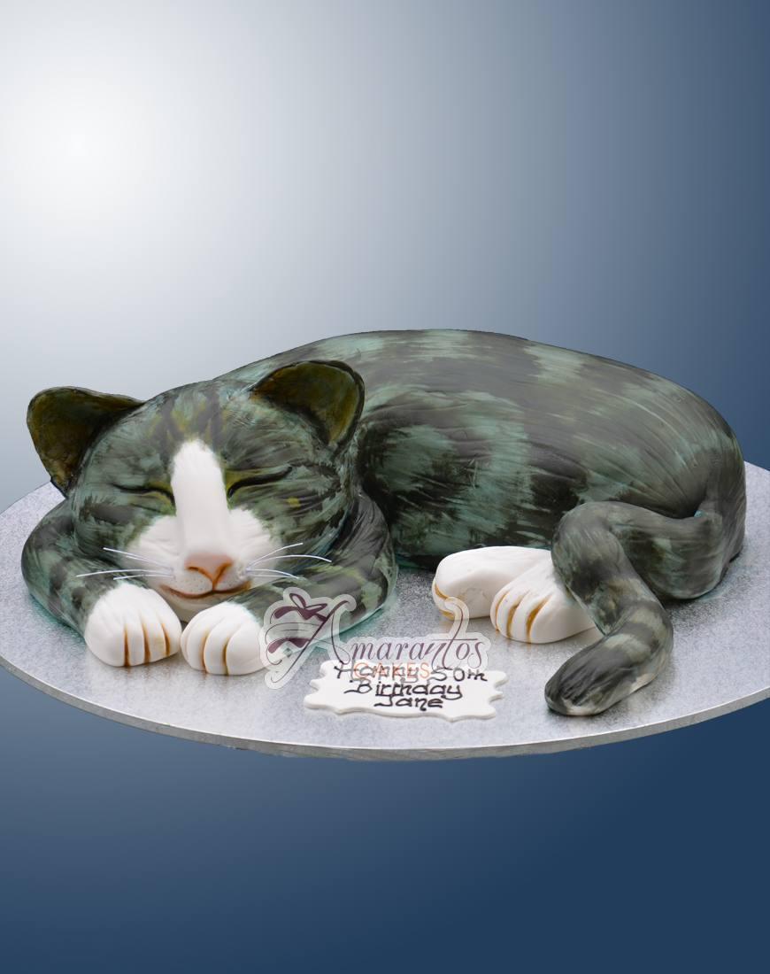 3D Cat - NC531