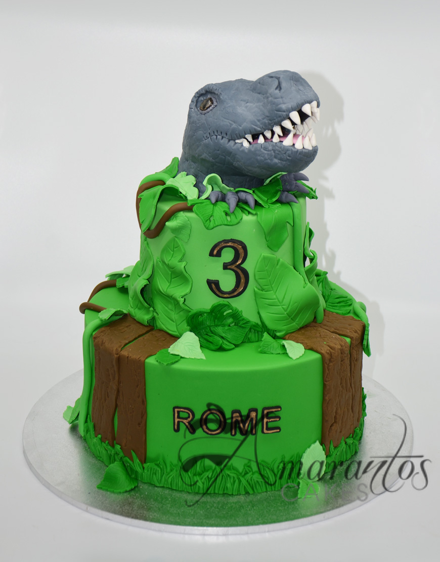 Two tier Dinosaur cake NC54