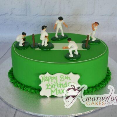 Cricket Pitch Cake - NC847 - Amarantos Cakes Melbourne